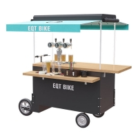 China CE Chain Transmit Box Structure 48V 300W Beer Bike Cart