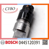 China Diesel fuel injector nozzle 0445120391 for diesel engine DELONG WEICHAI common
