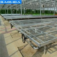 China Galvanized Greenhouse Rolling Benches / Greenhouse Benches And Tables