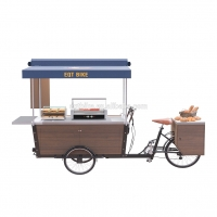 Quality SS304 48V Spray Paint Box Structure Bike Food Cart for sale