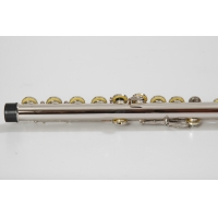 China Student Flute Beginners Flute 16 Hole Concert School Flute 2 Year ... Profession