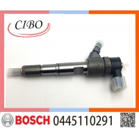China 0445110291 Fuel Injector Nozzle
